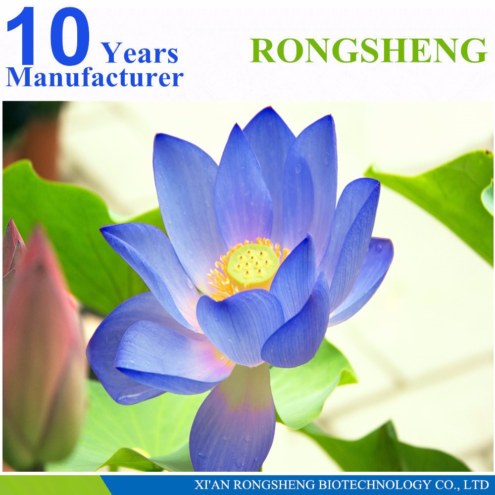 Buy blue lotus flower images flower decoration ideas buy blue lotus flower gallery flower decoration ideas buy blue lotus flower choice image flower decoration izmirmasajfo