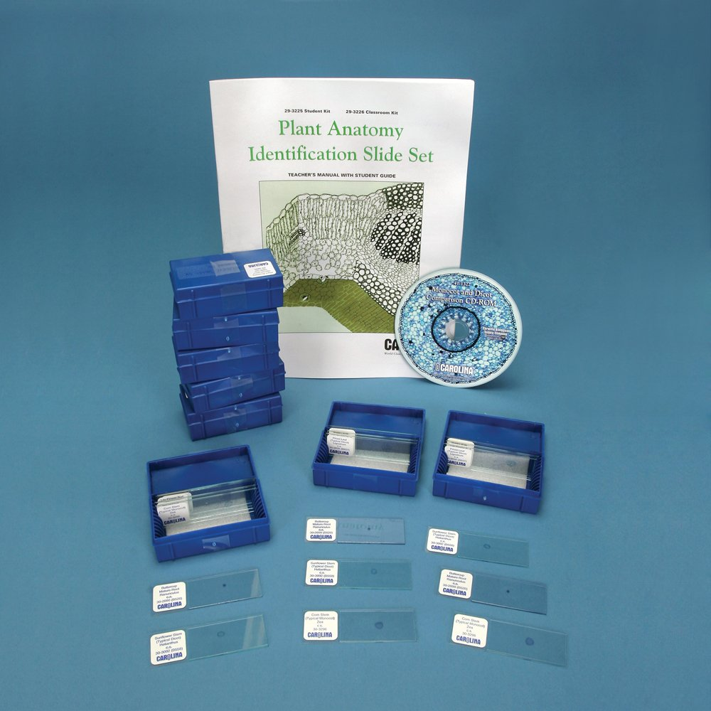 Buy Plant Anatomy Microscope Slide Set in Cheap Price on Alibaba.com