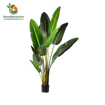 Plastic Bird Of Paradise Indoor Mini Palm Trees 190cm Tall Buy