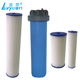 Replacement sediment filtro plegados Paper pleated water filter cartridge Cartucho 10'' 20'' BB plisados Poliester