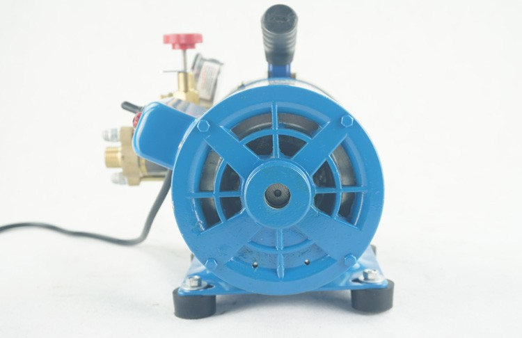 Garment Use Hot Sale 250W Single Plunger Pump Water Pump For Car Wash