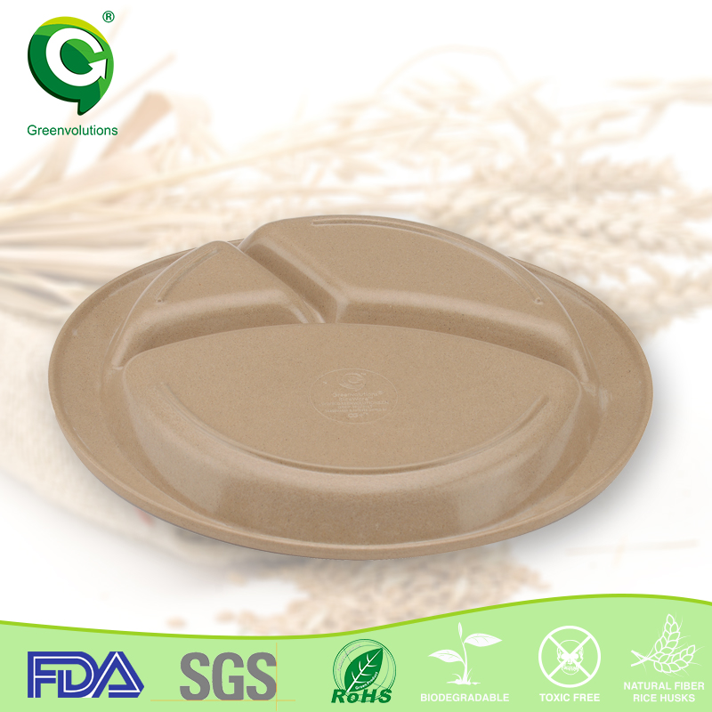 eco-friendly SGS passed paper moisture easy plates price