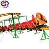 Mini roller coaster manufacturing electric train sliding dragon amusement ride for sale