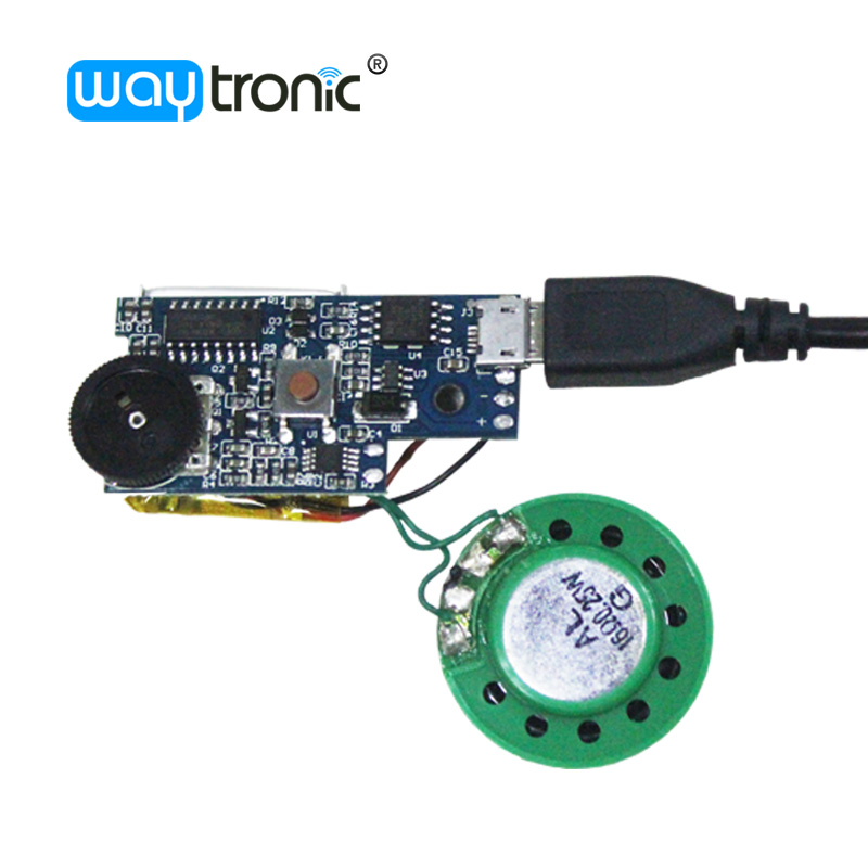 USB direct download Small MP3 voice box sound module with push button