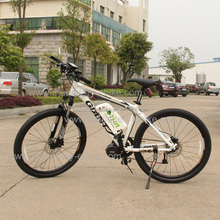 New product mountain electric bike 750w 1000W ebike