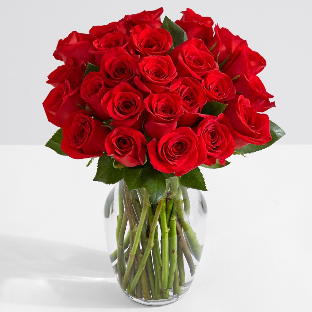 Cheap free animated roses find free animated roses deals on line at get quotations proflowers 24 count red two dozen red roses with glass ginger vase wfree izmirmasajfo