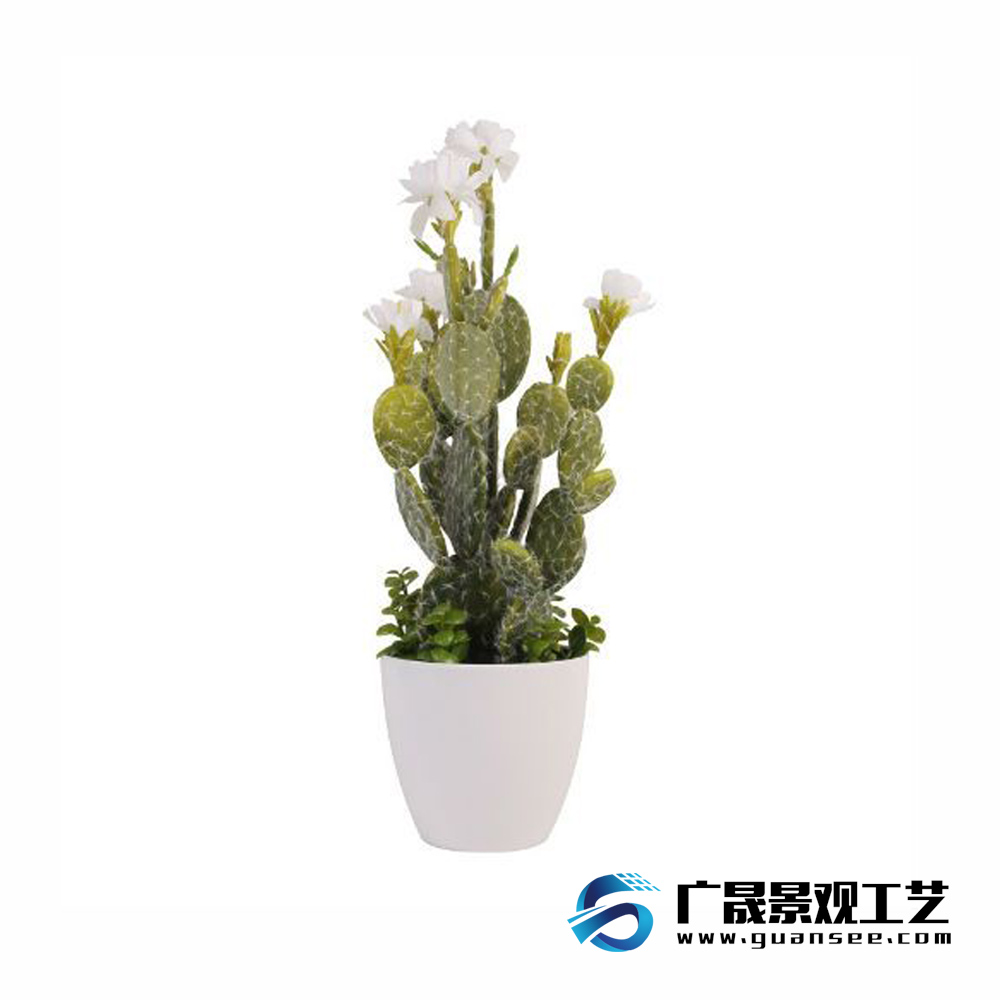 Hot sale artificial cactus bonsai real touch catcus outdoor and indoor decoration
