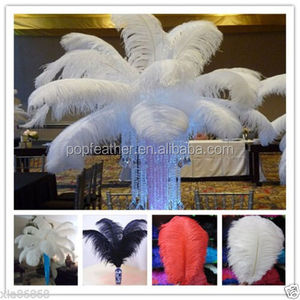 PM-1100 High quality wedding decoration colorful ostrich feathers