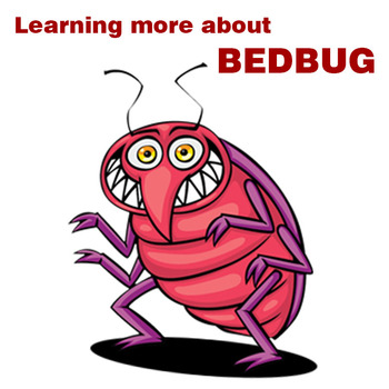 Learn more about bed bugs of mattress cover