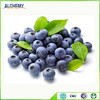 dried blueberry for snack and food from China