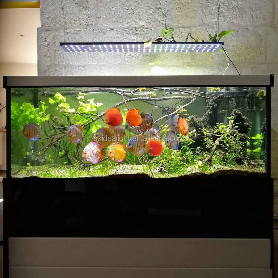 Ideacloud sunrise, sunset, cloudy, storm modes intelligent 4 channels programmable led aquarium light for freshwater tank