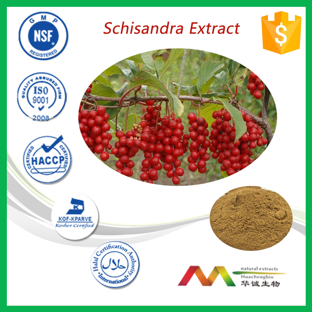 NSF-cGMP Manufacturer High Quality Schisandra Extract Powder