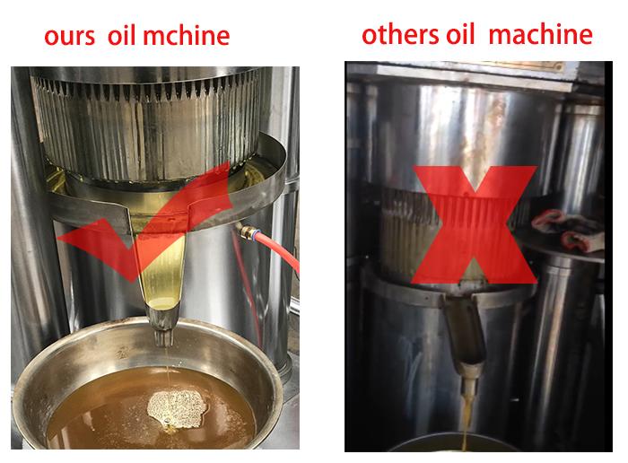 2019 Nouveau type d'olive maison palmiste ricin graines de figue de barbarie palmier tournesol neem machine d'extraction d'huile de sésame