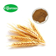 Food grade Spray dried 10 1 Wheat Germ Extract