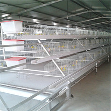 Hen Chicken Cage for African 20,000 farm shed breed house