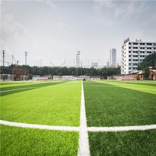 China Popular Flat Shape Indoor and Outdoor Soccer Turf Carpet