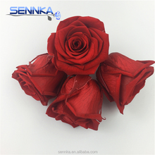 2018 big discount Fresh Rose head Preserved red flower for wedding