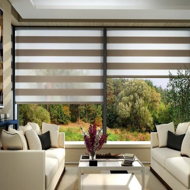Double dual sheer zebra roller blinds with good price