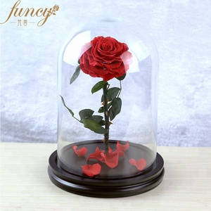 Perfect Gift Craft Gift Ideas Interior Decoration Design Eternal Rose Preserved Flower In Glass Dome