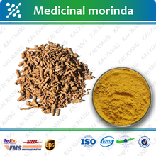 100% Natural Medicinal Indian Mulberry Root Extract/Radix Morindae Officinalis