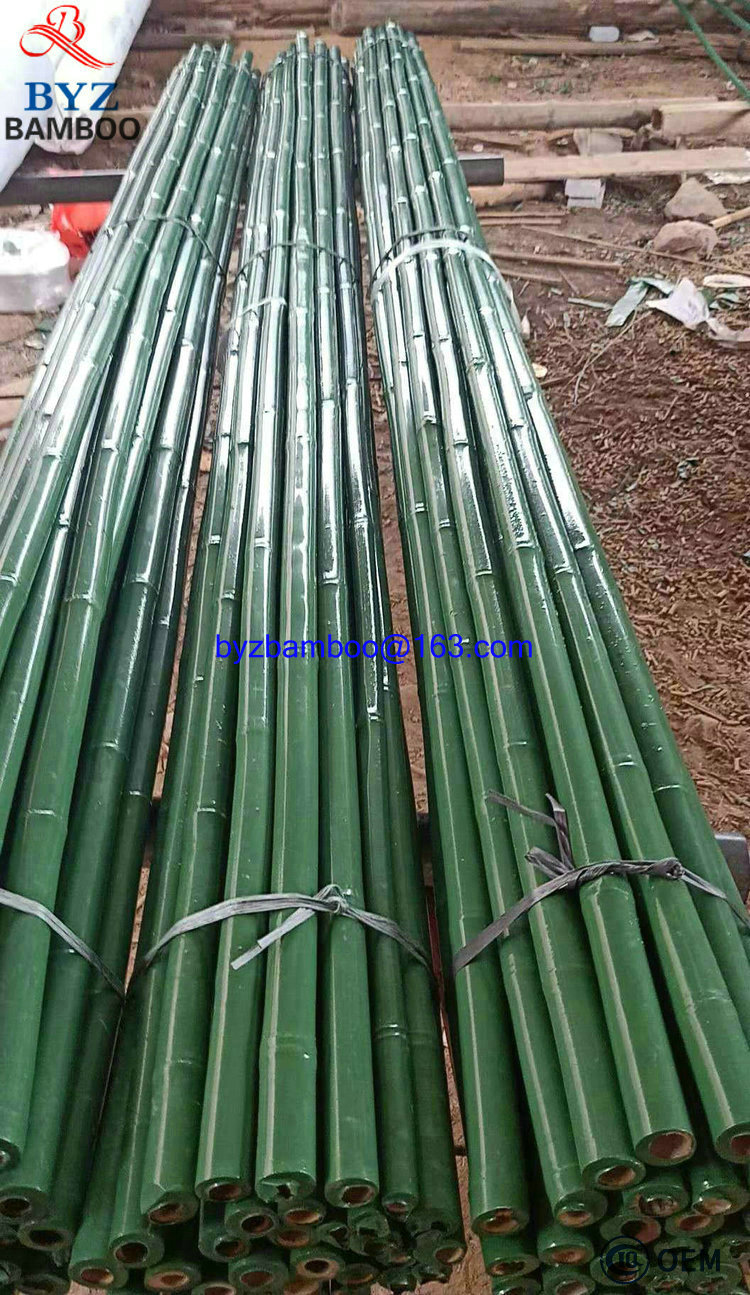 2019 Bamboo Sticks in Plastic Coat Bamboo Poles with Cover PVC Coat Bamboo