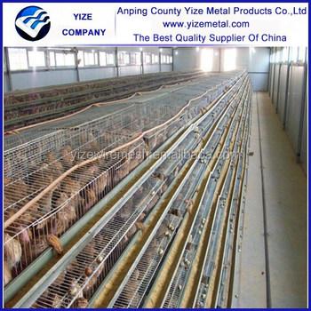 Alibaba Website Automatic Quail Farming/cages For Quail ...