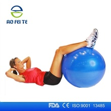 Ebay LIFETIME WARRANTY Superior Fitness 2000 lb Exercise Swiss Stability Ball