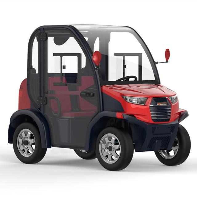 2 Passenger Mini Electric Car Yuanwenjun Com
