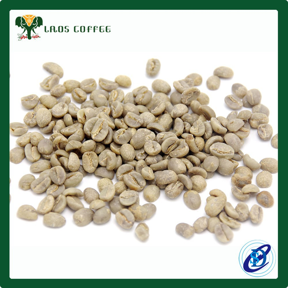 Arabica And Robusta Coffee Beans Green Coffee Bean Price