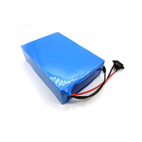 Electric Bike Battery 48 Volt Lithium Battery Pack 48V 20Ah 25Ah 30Ah Triangle Ebike Battery