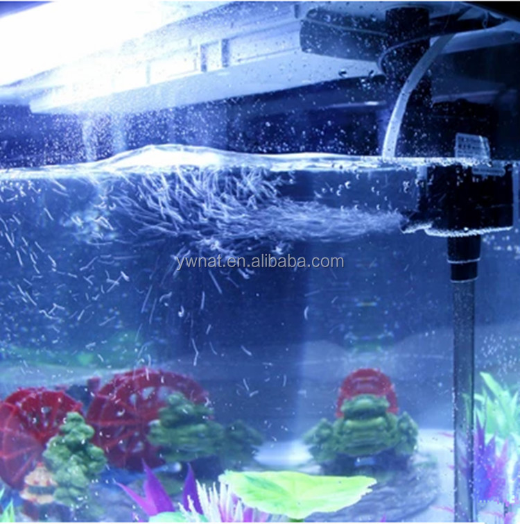 Mini Curved Glass Fish Tank Aquarium