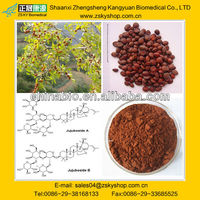 Ziziphus Jujuba Extract with Jujubosides 2% from GMP manufacturer