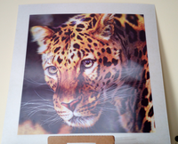 innnovative design animal leopard tiger decorative painting for indoor wall fromWorld Class 3D Lenticular Printing Manufacturer