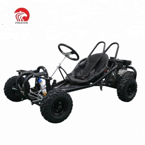 Customized 196cc fashion style cooler go kart