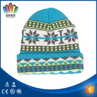 FT FASHION Children's Jacquard Weave Knitted Beanie hat