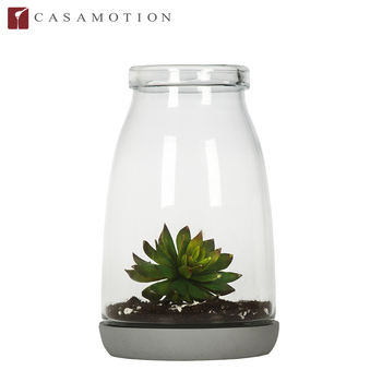 Casamotion Decoration Hand Blown Glass Vases Terrarium Wholesale For
