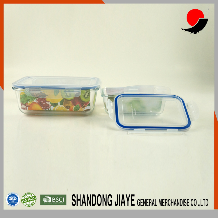 New Design High Borosilicate Glass Rectangular Thermos Lunch Box