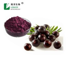 Pure nature 5:1 or 10:1 purple red powder brazilian acai berry extract
