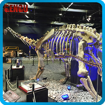 Prehistoric High Simulation Dinosaur Skeleton Statue