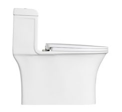 Ceramic One Piece Kohler Water Closet Toilet Price