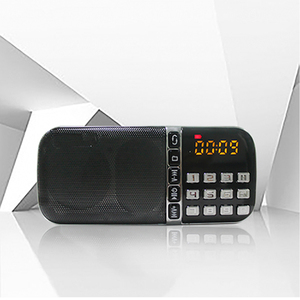 Portable Dynamo AM FM Digital Radio Receiver Kit Pocket India, Audio Outdoor Radio With USB And Memory Card Active Mini Speaker