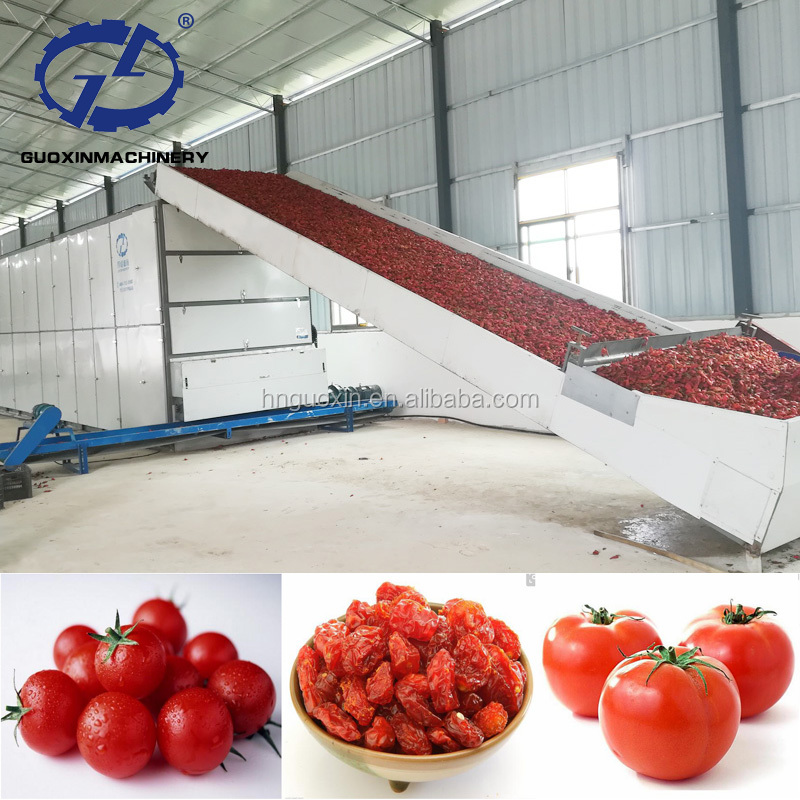 Whole Processing Line Making Salad Dressing Tomato Chips Drying Machine
