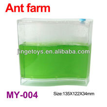 magic toy about ant farm