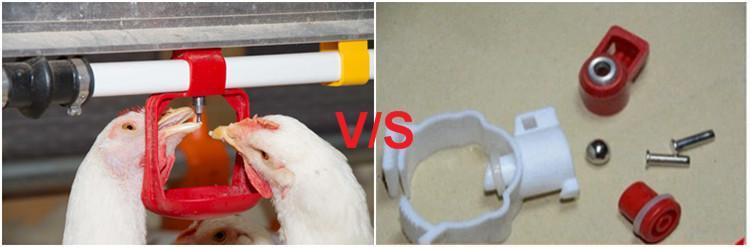 Chiken cage (56)_.jpg