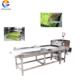 Automatic vegetable cutter parsley cutting machine GD-586