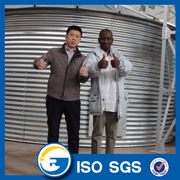 500 Tons grain storage steel silo for sale