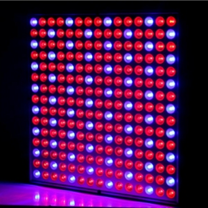 Top Square 45W UV IR Growing Lamp Plant LED Grow Light for Indoor Plants Hydroponic Plant Grow