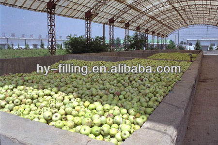 Apple Pear processing line