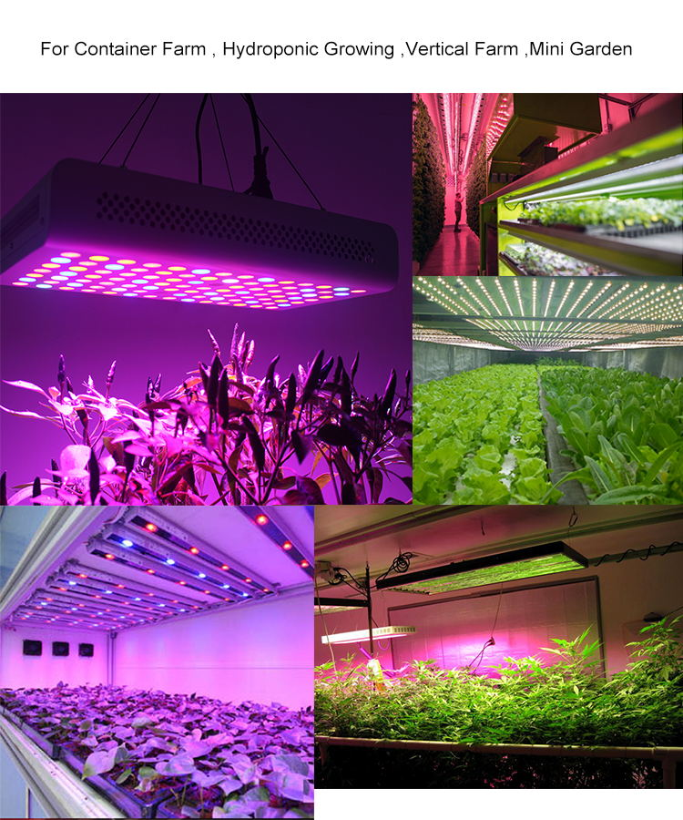 Aluminum Based Warm White Led Grow Light 288 Quantum Board With Lm301h Buy Customized Plant Grow Led Pcb Board 660nm 730nm Led Chip Pcb