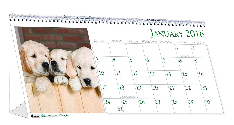 """House of Doolittle 2017 Monthly Desktop Tent Calendar, 8.5"""" x 4.5"""", Puppies (HOD3659-1)"""